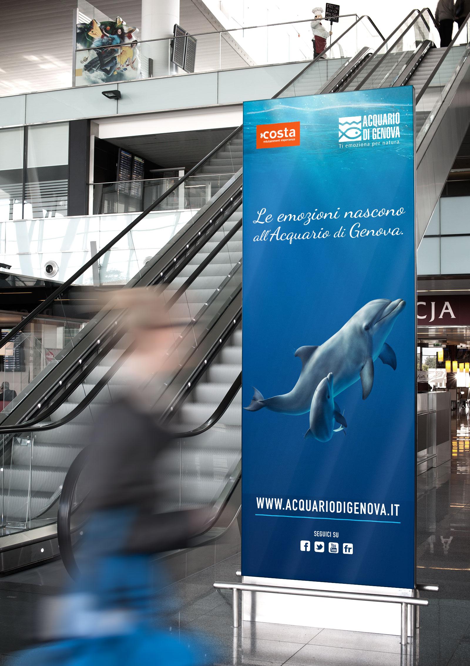 delfini-cuccioli-stazione